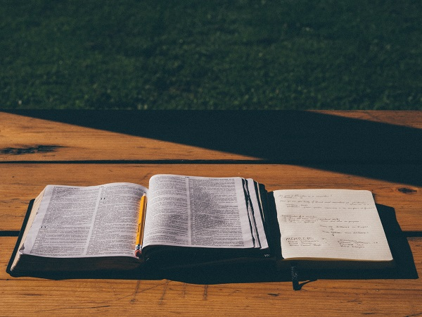 What Does the Bible Say About Division within the Church